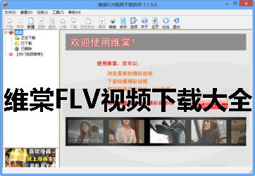 维棠FLV视频下载大全