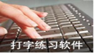 练习五笔打字软件专题