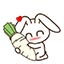 兔子qq表情