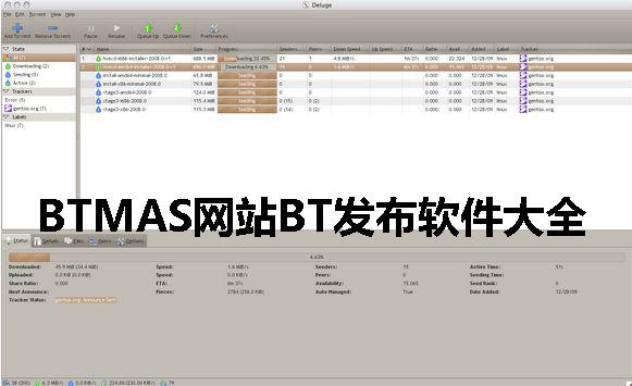 BTMAS网站BT发布软件大全