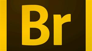 Bridge软件专区