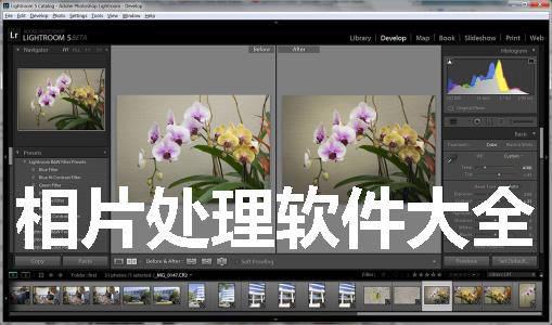 相片处理软件大全