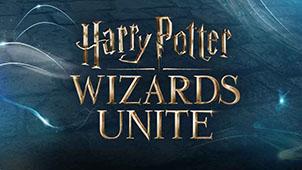 哈利·波特:巫师联盟图片