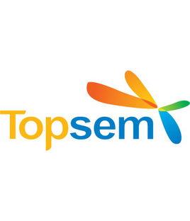 Topsem竞价易客户端