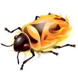 FireBug(萤火虫)...