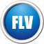 FLV视频转换器...
