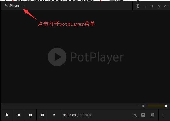 PotPlayer截图