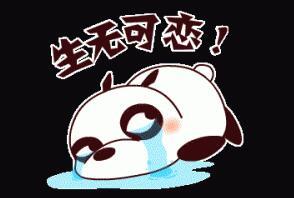 QQ宠物熊表情包