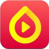 种子视频 2.5.50 官方版