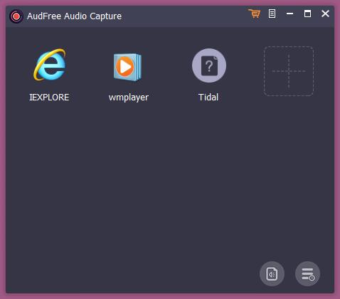 AudFree Audio Capture