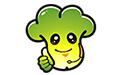 大白菜u盘装系统工具