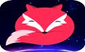 飞狐视频下载器