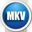 闪电MKV/AVI视频转换王