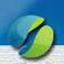 新纪元通用账证查询打印软件 格林财务软件