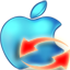 蒲公英苹果Apple...