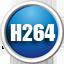 闪电H264格式转...