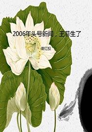 2006年头号新闻,王菲生了 2.0