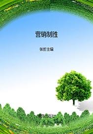 营销制胜——中国杰出营销奖案例精选