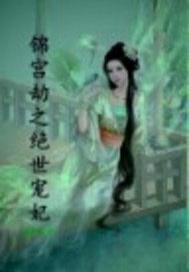锦宫劫之绝世宠妃