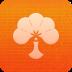 红杏浏览器 1.0