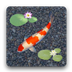 鲤鱼池塘动态壁纸 1.2.0
