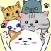 猫咪养成喵朋友 1.6