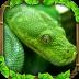 模拟农场蟒蛇...