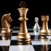 国际象棋中文对...