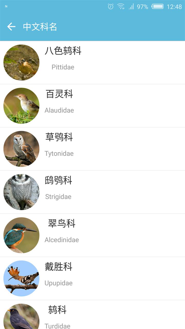 鸟叫声大全