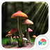 3D蘑菇-梦象动态壁纸 1.2.9