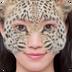 搞怪动物面具制作