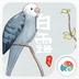白露-梦象动态壁纸 1.2.5