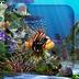 3D水族馆动态壁纸 6.1