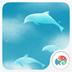 飞舞的海豚-梦象动态壁纸 1.2.11