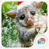 小袋熊-梦象动态壁纸 1.3.7
