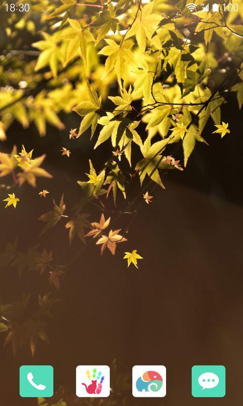 秋日落叶-梦象动态壁纸
