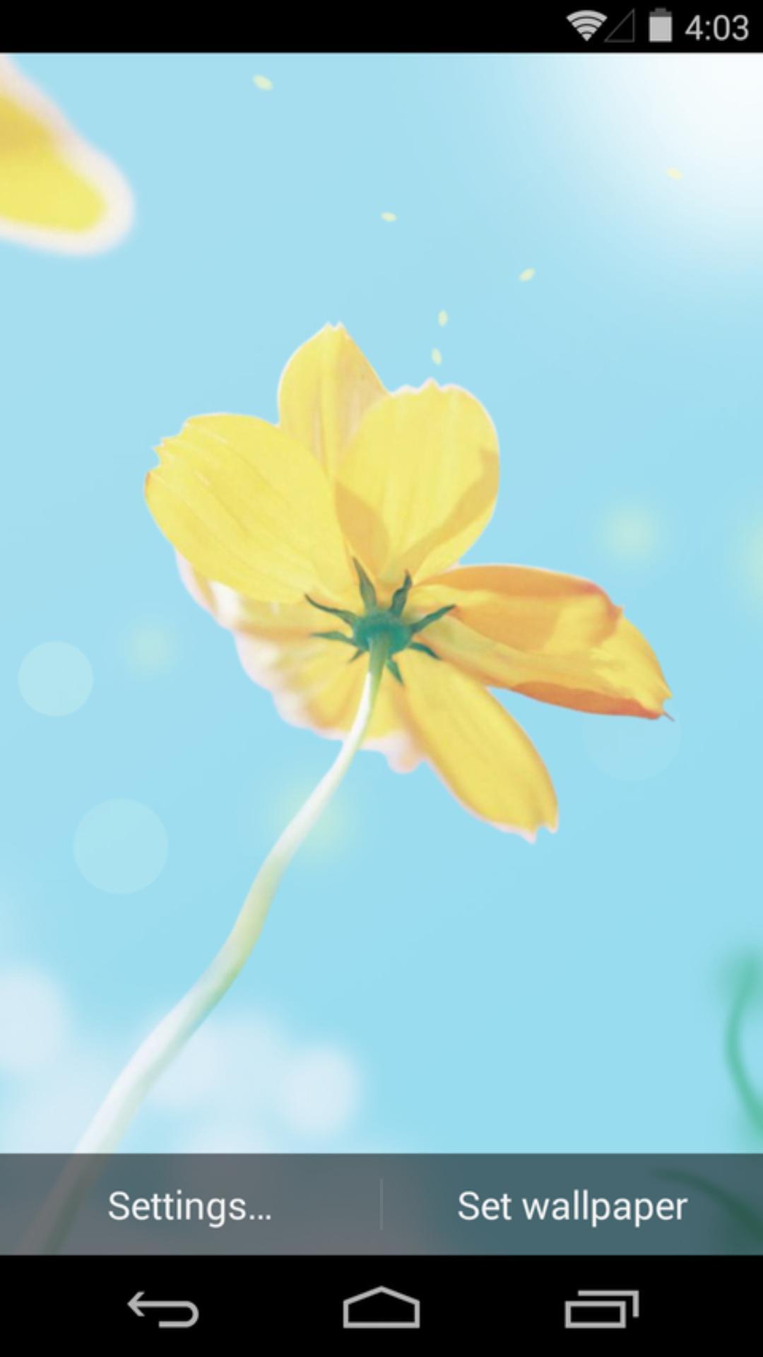 春天里-梦象动态壁纸