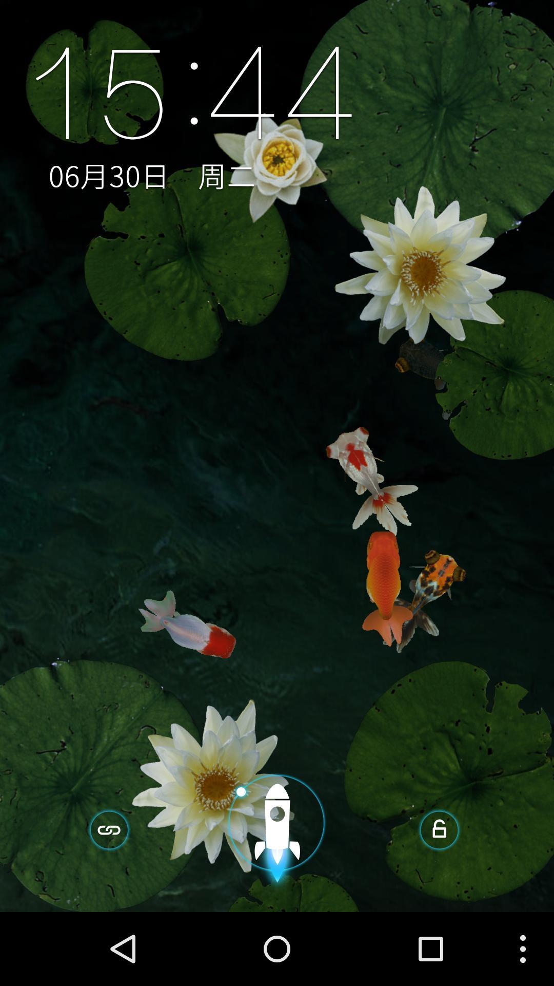 3D池塘里的金鱼 梦象动态壁