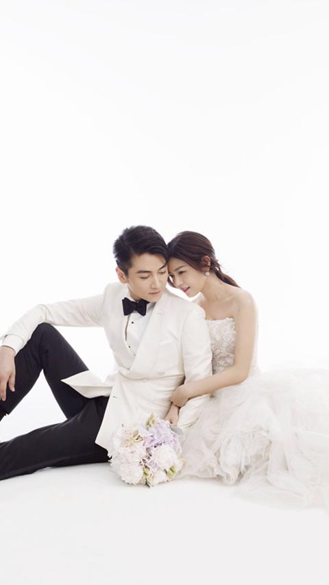 陈晓陈妍希夫妇