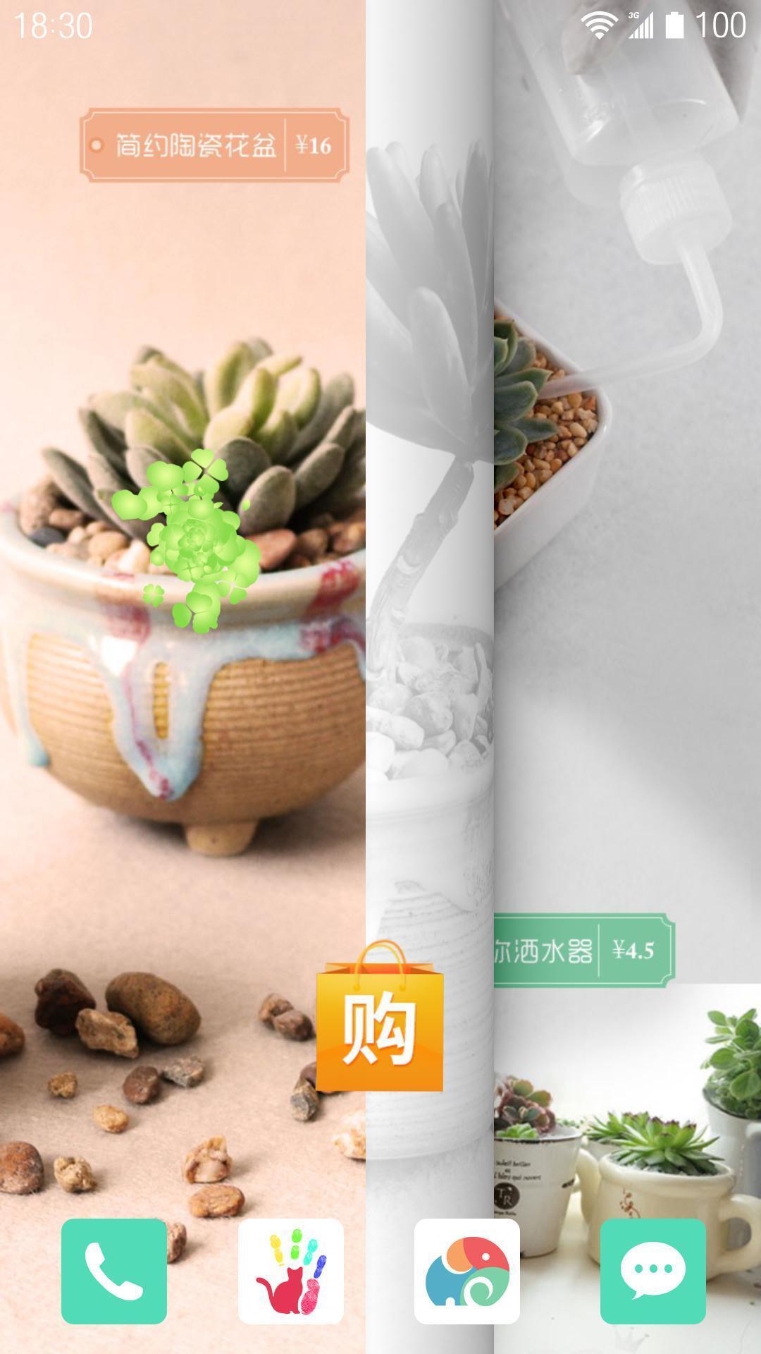 可爱多肉植物-梦象动态壁纸