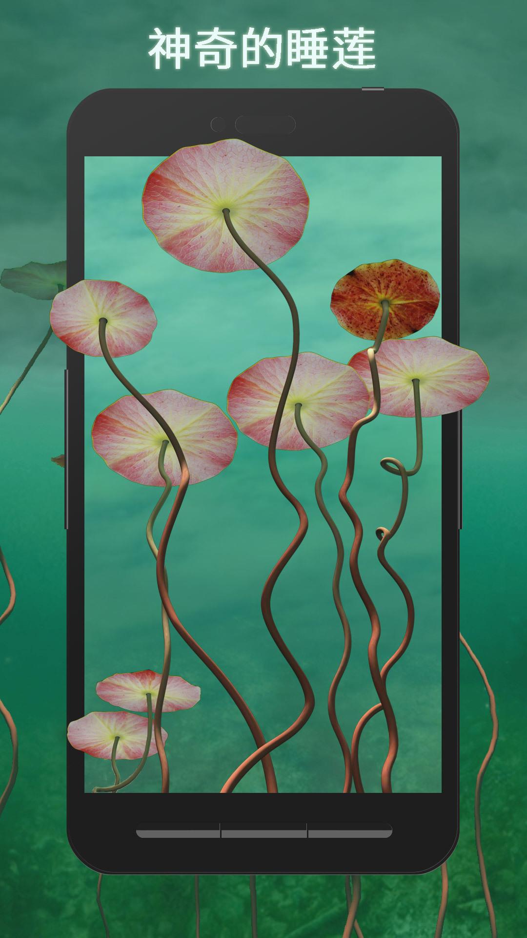 3D睡莲-梦象动态壁纸