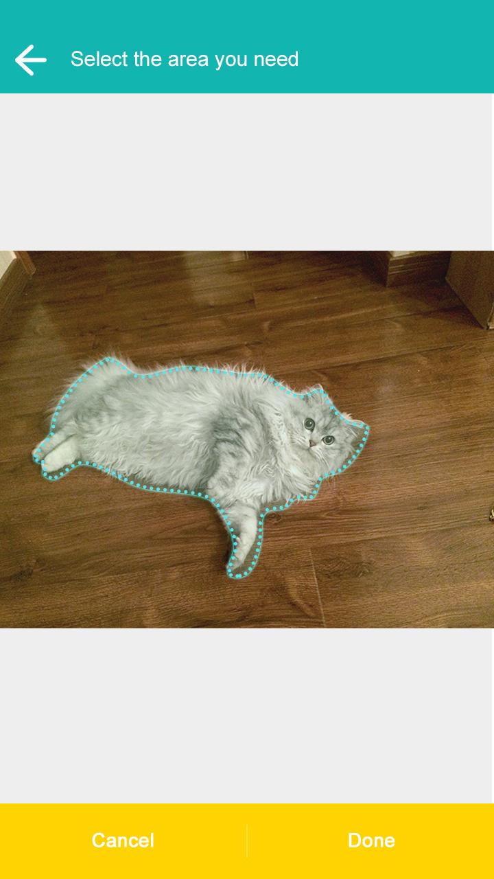 飞力猫-抠图神器