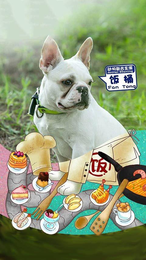 神犬小七2萌宠锁屏