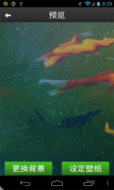 超自然金鱼动态壁纸