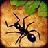 口袋蚂蚁 1.0.6
