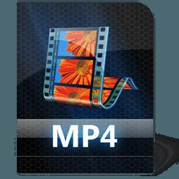 视频转换的MP4 A...