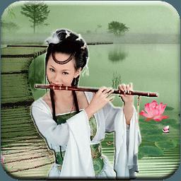 中国民乐 2