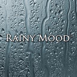 雨天心情 1