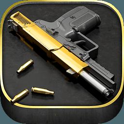 爱枪支 5.24.1