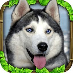 流浪狗模拟 1545463.4